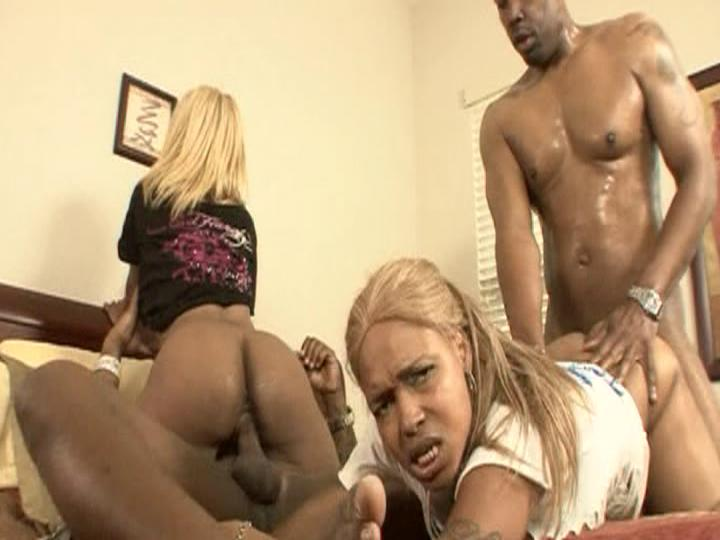 Da Dirty South Booty Shake 3 / This clip from Da Dirty South Booty Shake 3 by West Coast Productions features a nasty little orgy scene with several hot bitches with nice fat tight asses getting their wet cunts fucked and their assess fingered.