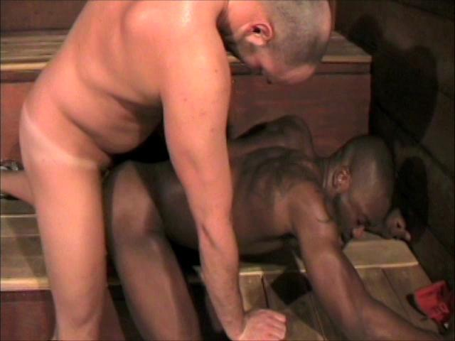 Big Cocks And Raw Holes Xvideo gay
