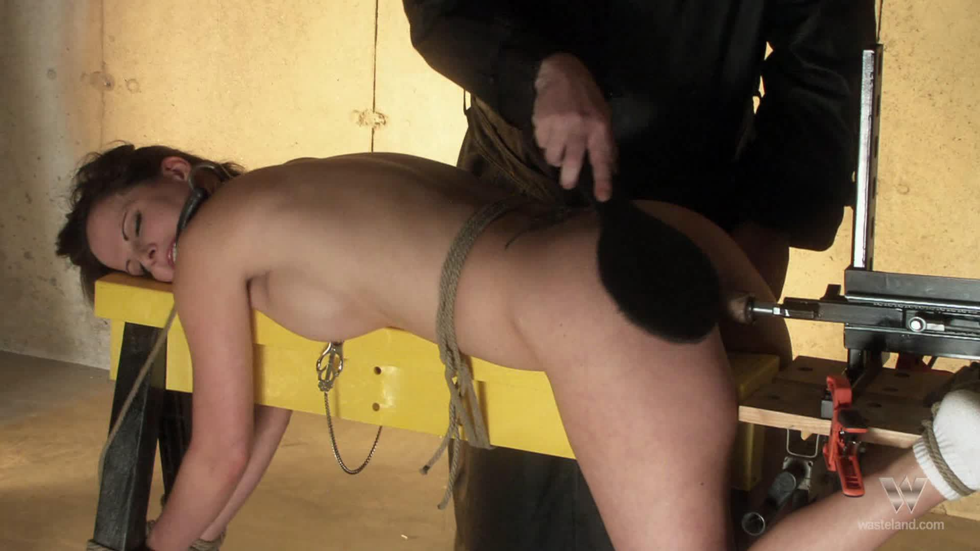 The Man In Black / Watch this lovely brunette bondage slave succumb to a fucking machine and her Master's paddle in a kinky clip from Wasteland Studios!