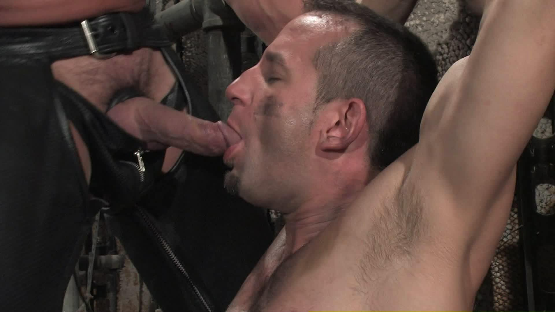 Bound Gods Xvideo gay