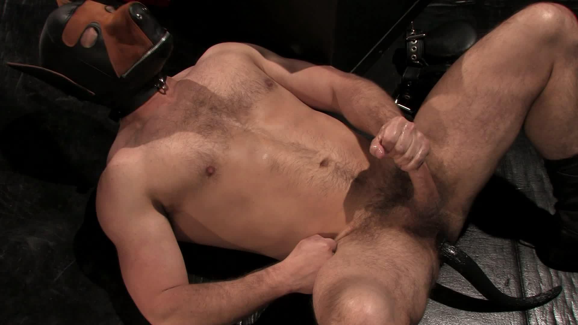 Gay men sex pig play