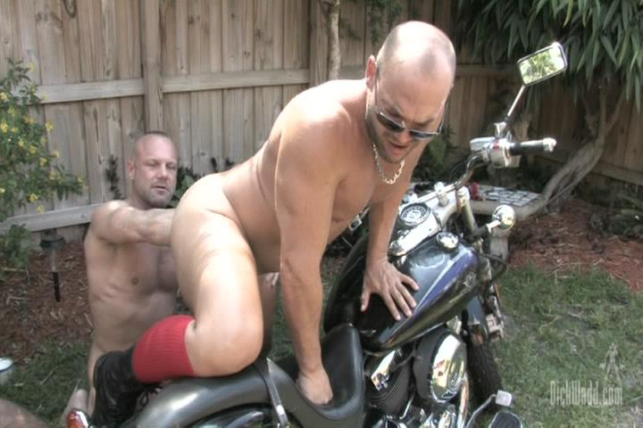 Wet Muscle Pigs Xvideo gay