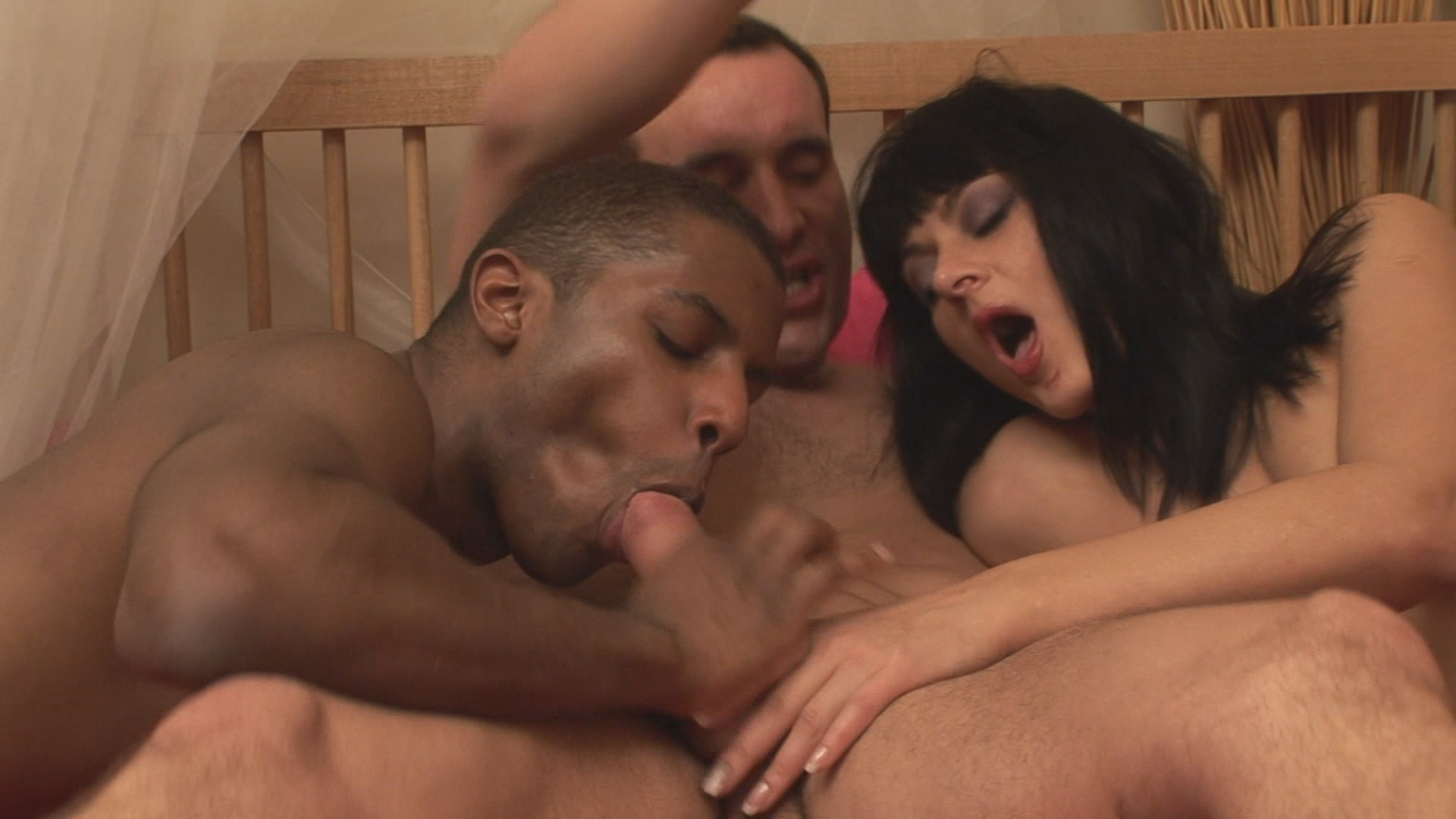Interacial hot bisexual action