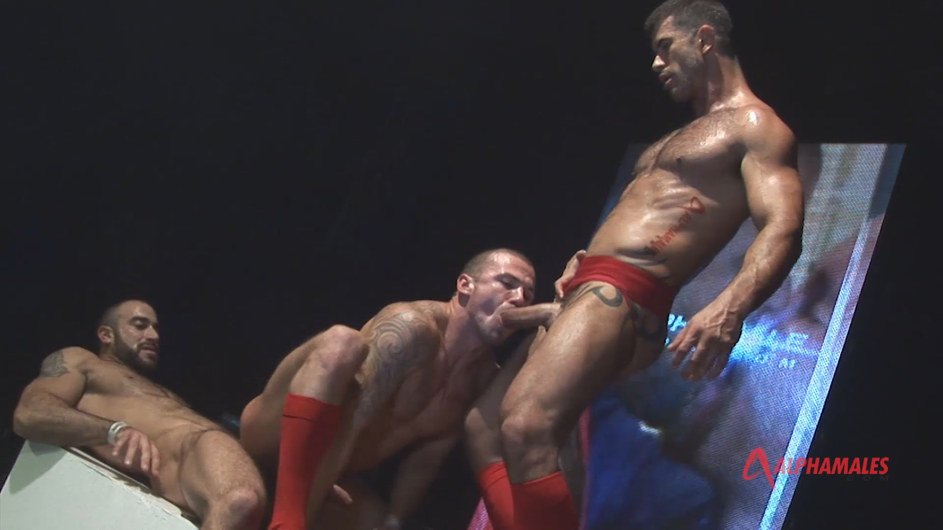 Toolbox Live Xvideo gay