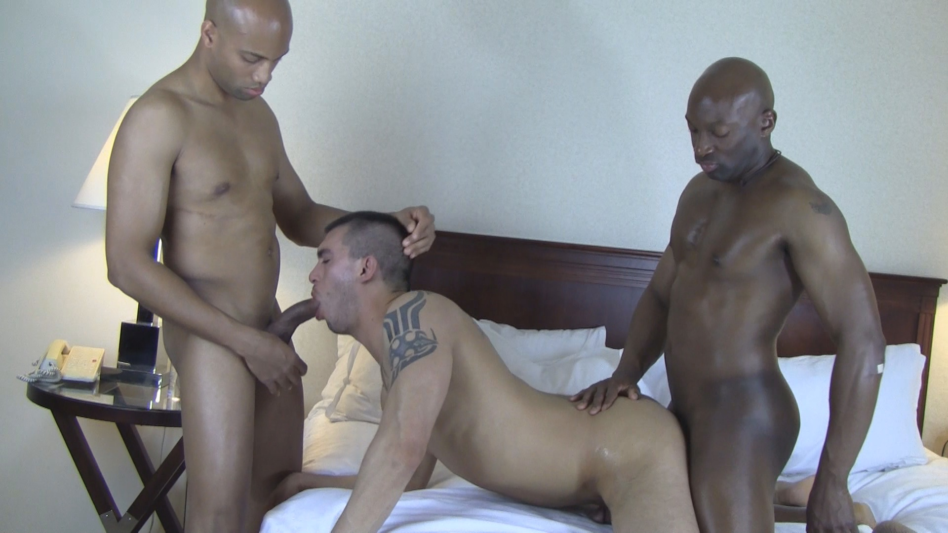 Creampies: The Urge To Breed 2 Xvideo gay