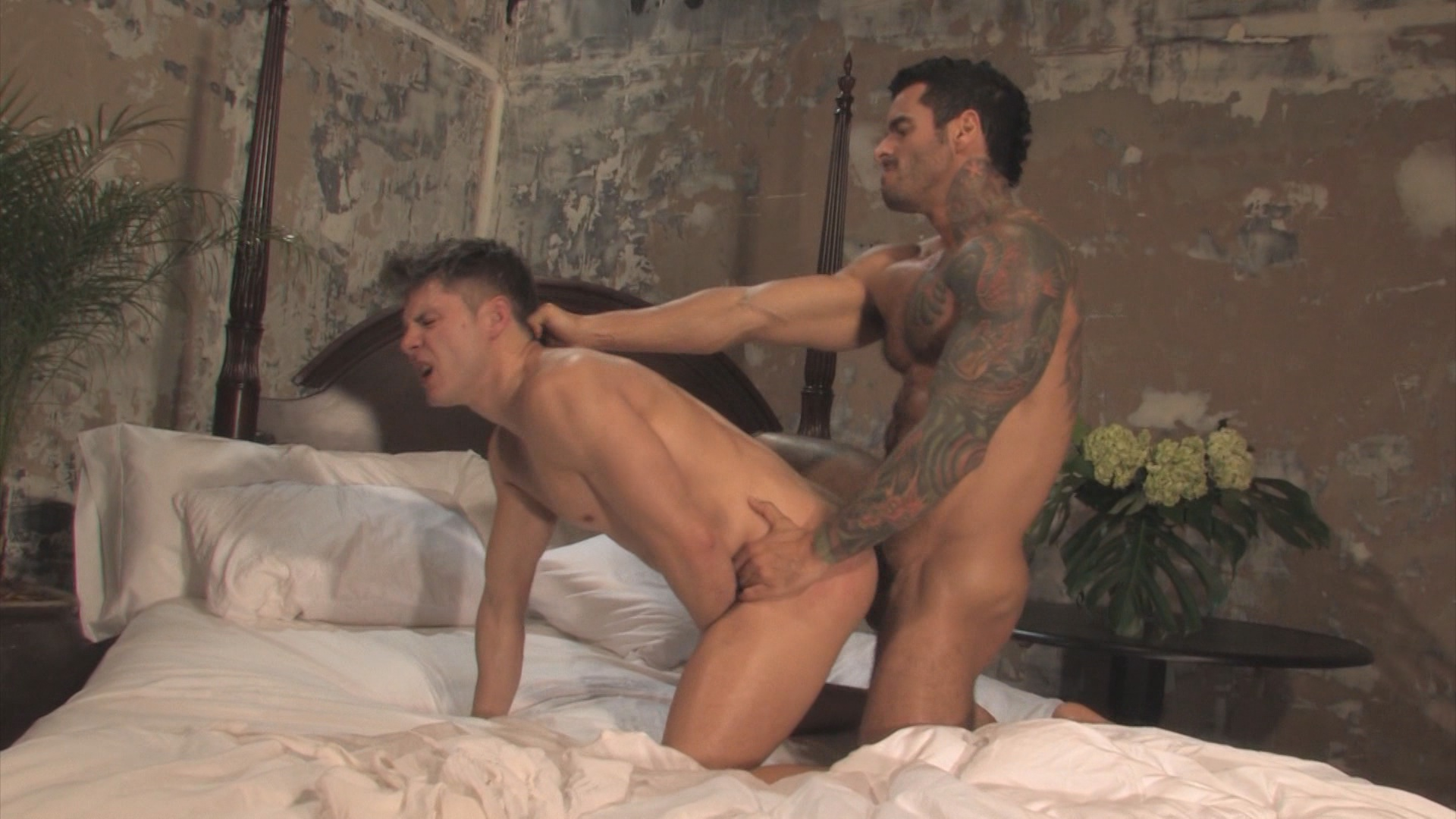 Best Of Hard Friction Xvideo gay